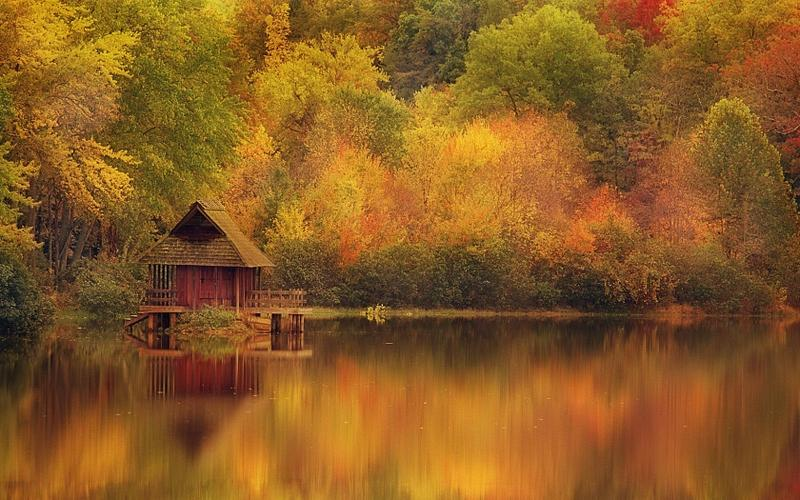 forest,autumn (season) autumn season forest houses lakes 1680x1050 wallpaper – forest,autumn (season) autumn season forest houses lakes 1680x1050 wallpaper – Lakes Wallpaper – Desktop Wallpaper