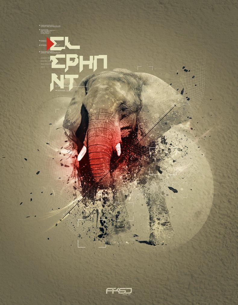 Elephant by ~FKSD