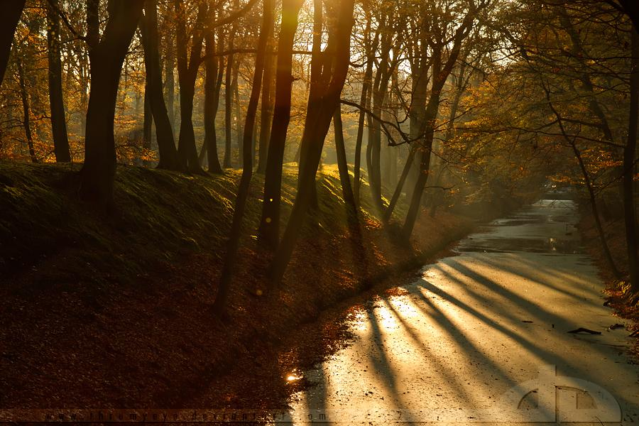 Autumn Mood by *thrumyeye