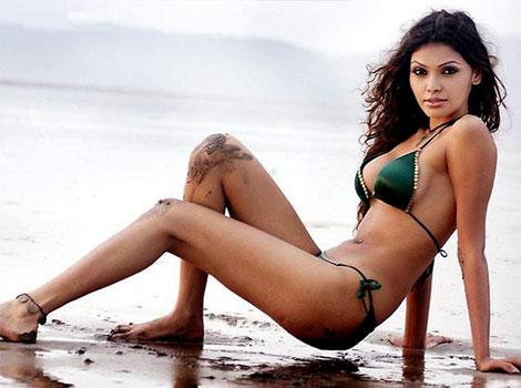 Sherlyn | NAUGHTY ON TWITTER: Sherlyn Chopra | Photos Entertainment | - hindustantimes.com