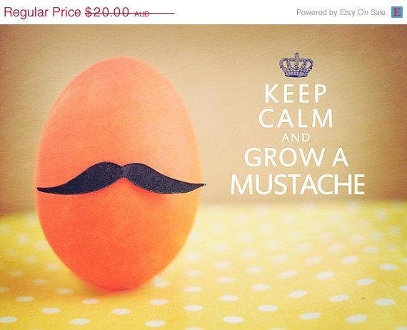 ON SALE READYToShip Keep Calm & Grow A Mustache by happeemonkee