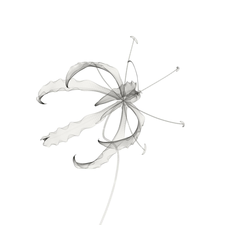 sampl3.jpg (1500×1500)