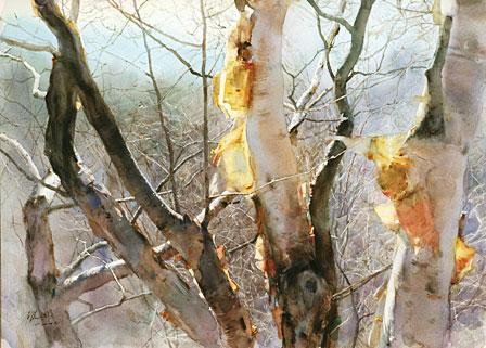 Resultados da Pesquisa de imagens do Google para http://www.artistsnetwork.com/wp-content/uploads/2011/03/0409_WCA_Autumn_View_Winter_Birch.jpg
