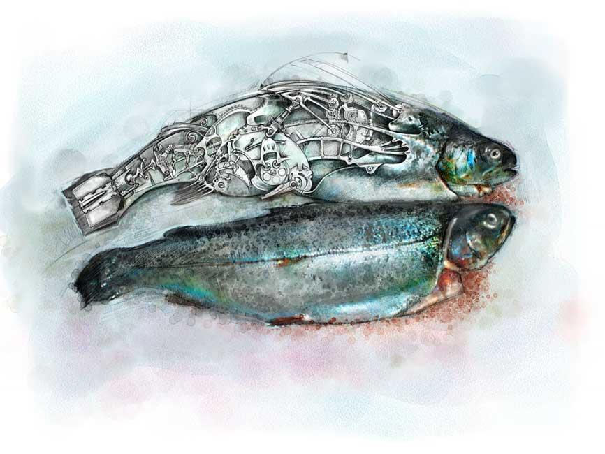 Mechanical fish,-beaudaniels.com illustration
