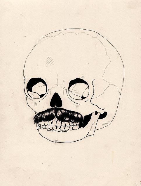 Skull in Colour | Flickr: Intercambio de fotos