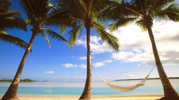 nature,beach nature beach cook islands hammock palm trees 1920x1080 wallpaper – Beaches Wallpapers – Free Desktop Wallpapers