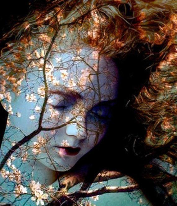Autumn Decor Fine Art Print Ophelia Warehouse 13 by ImagineStudio