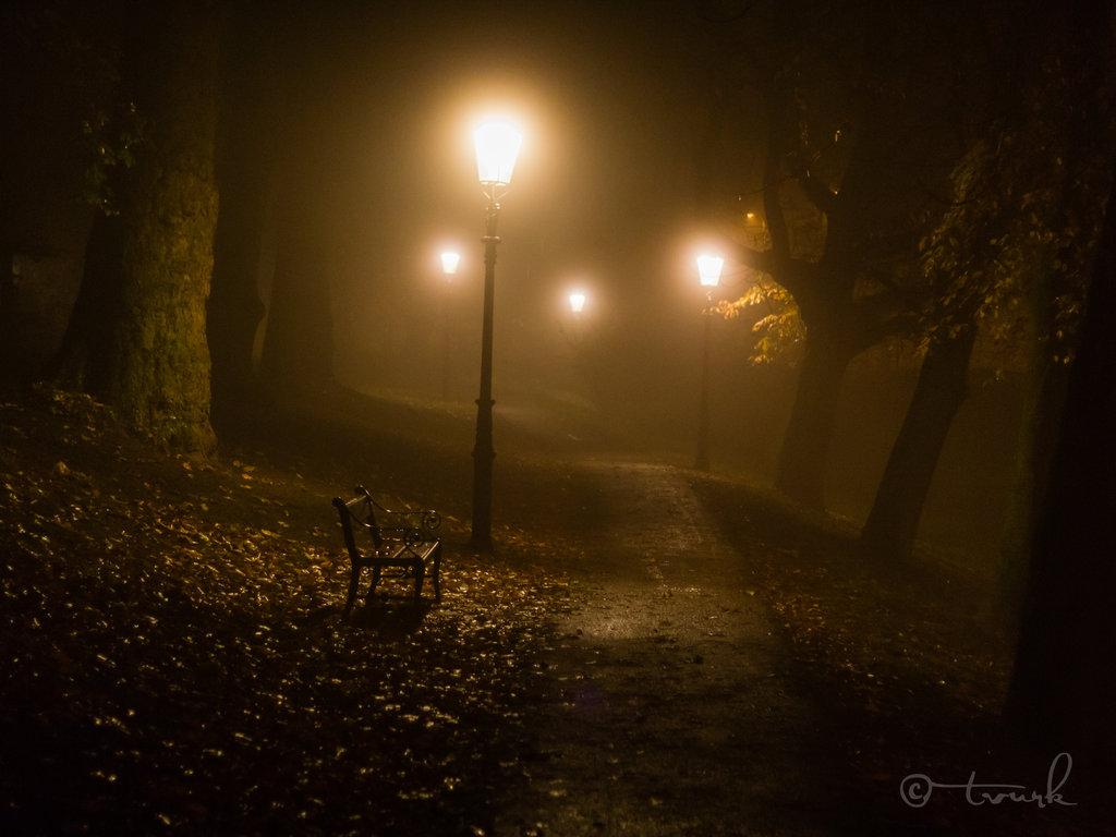 November Night by *tvurk