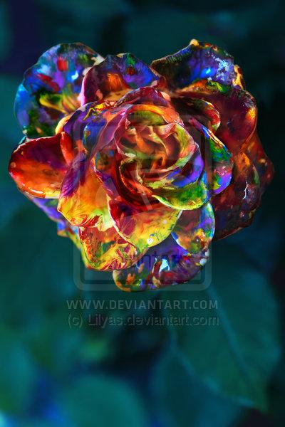 deviantART Shop Framed Wall Art Prints & Canvas | Photography | Animals, Plants & Nature | Painted Rose by artist `Lilyas