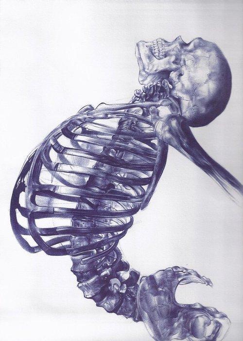 Ballpoint-pen-drawing-by-Andrea-Schillaci..jpg (JPEG Image, 500×703 pixels)