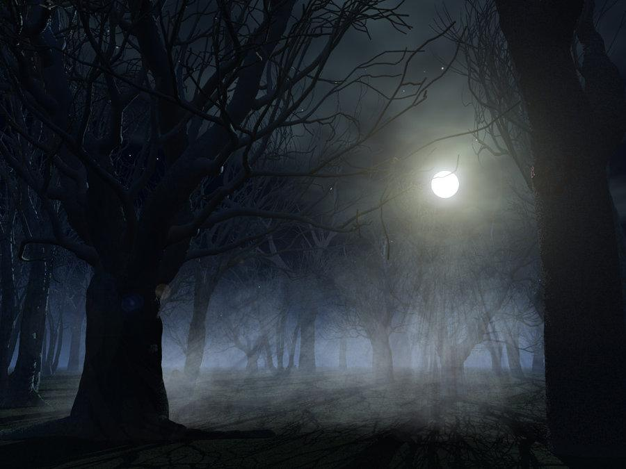 Spooky forest background by *indigodeep