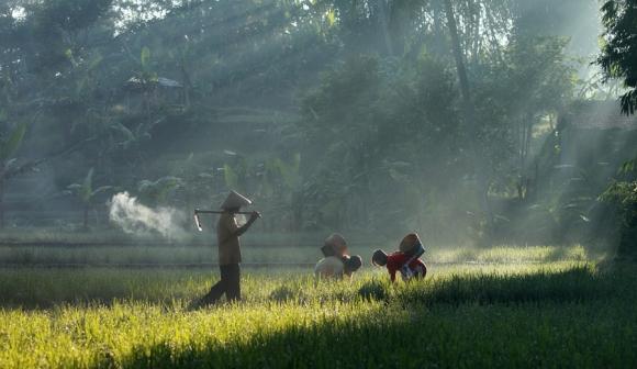 Life in Indonesia by Taufik Sudjatnika   inspirationfeed.com