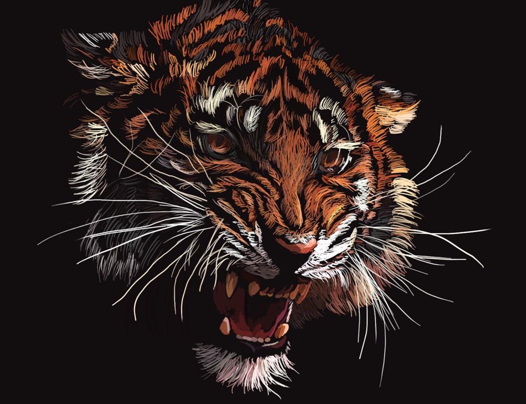 animals tigers artwork drawings - Wallpaper (#906878) / Wallbase.cc