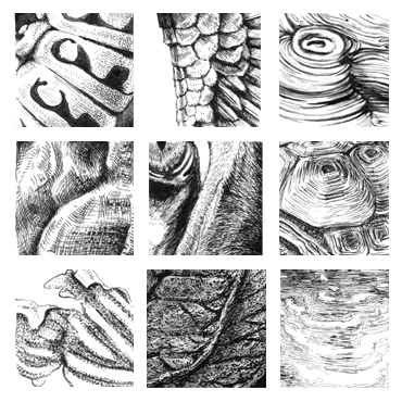 Textures in Black and White