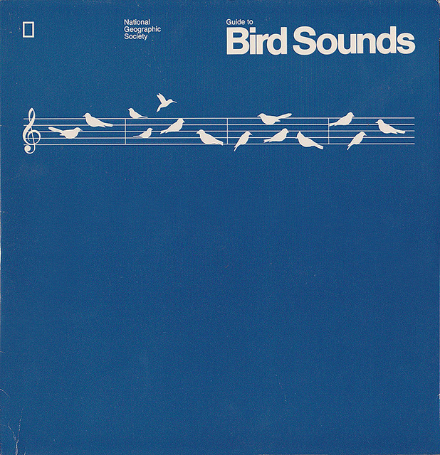 Guide to Bird Sounds | Flickr - Photo Sharing!
