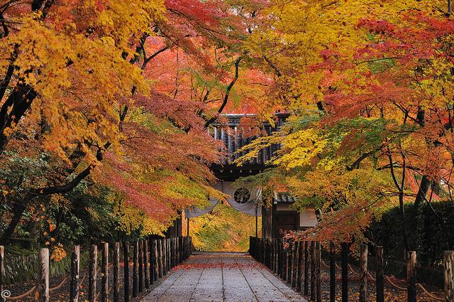 光明寺 | Flickr - Photo Sharing!