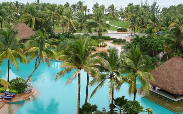 swimming pools,palm trees palm trees swimming pools 2560x1600 wallpaper – swimming pools,palm trees palm trees swimming pools 2560x1600 wallpaper – Swimming Wallpaper – Desktop Wallpaper