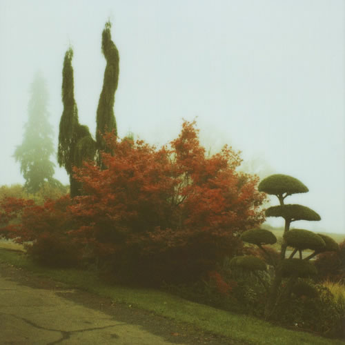 Beautiful Nostalgic Nature Shots by Anna Verlet | Abduzeedo | Graphic Design Inspiration and Photoshop Tutorials