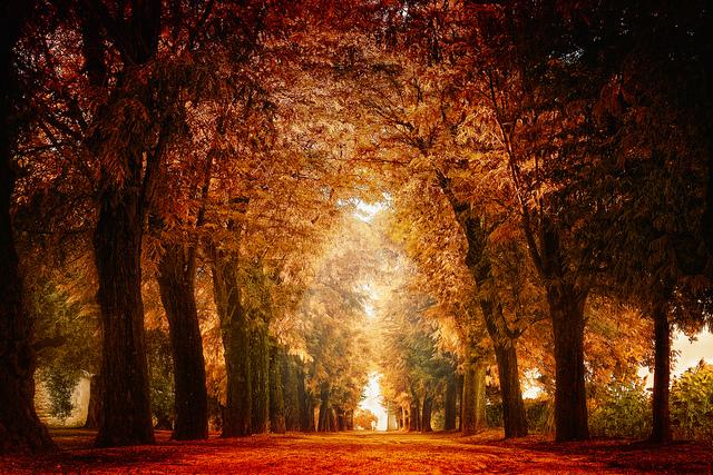 Fall&SummerV3Myst3   Flickr - Photo Sharing!
