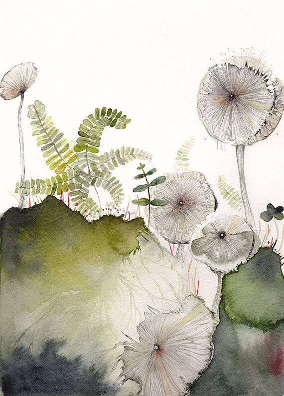 Maidenhair and Mushrooms Archival Print by amberalexander on Etsy