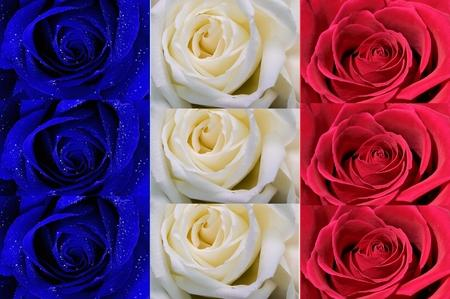 flowers france flags 1600x1066 wallpaper – France Wallpaper – Computer Desktop Wallpapers
