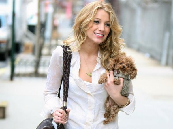 blondes,women blondes women actress blake lively puppies serena van der woodsen 1920x1440 wallpaper – Puppies Wallpaper – HD Wallpapers