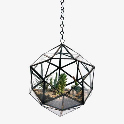 Score+Solder Terrariums | Design Milk ($200-500) - Svpply