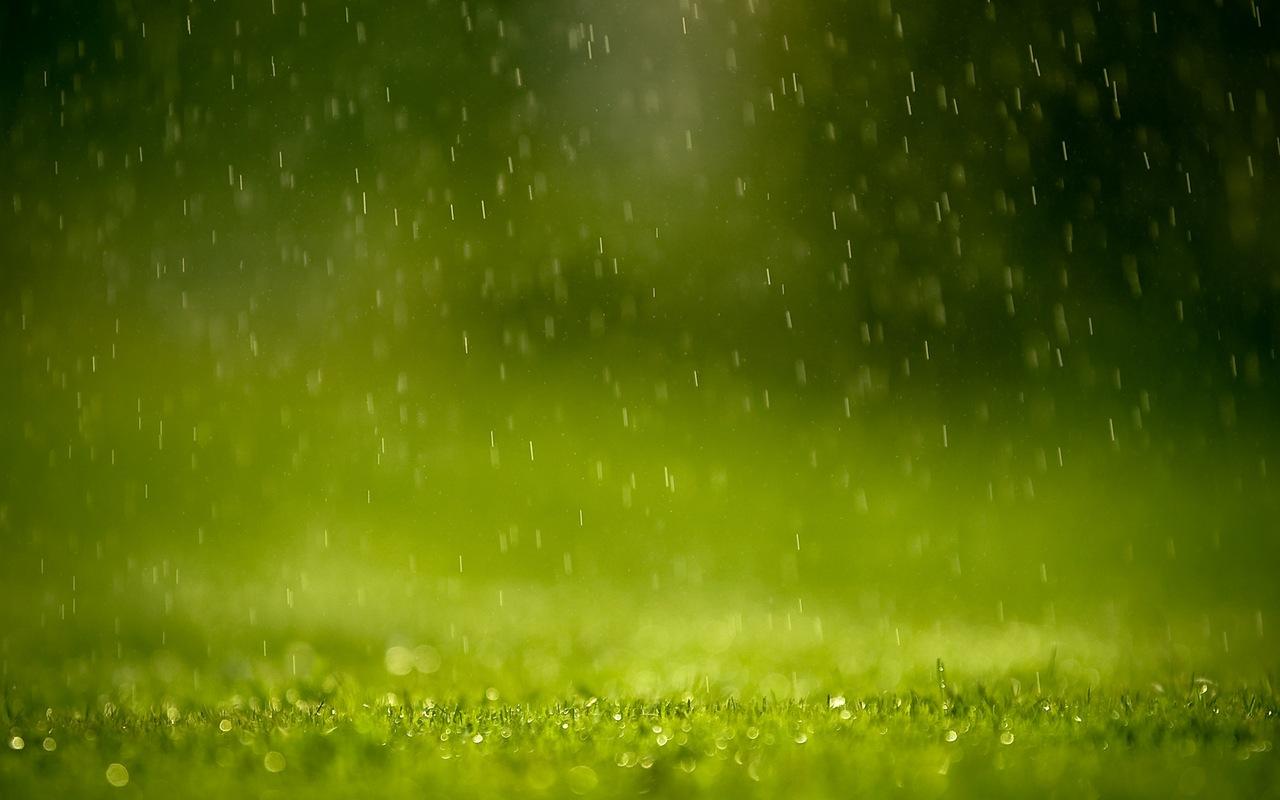 дощ, люблю дощ. | 7 фотографій