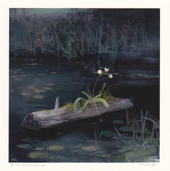Orchid on Floating Log Archival Print by jeremymiranda on Etsy