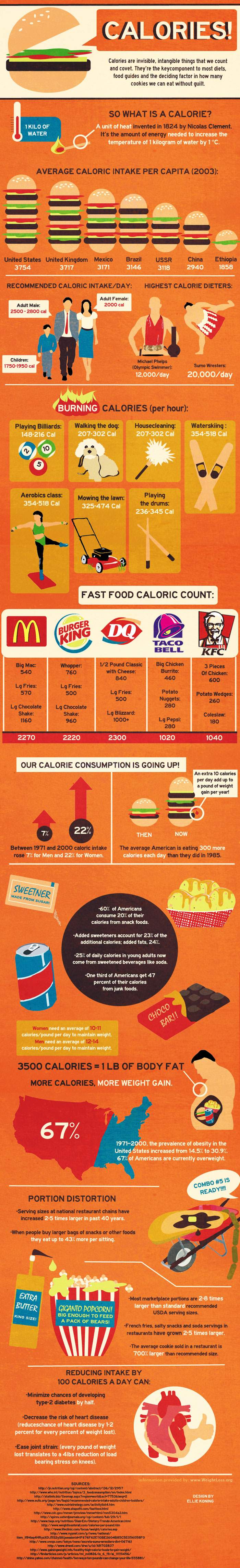 The Cost of Calories   THE Weight Loss Resource