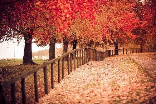 Nature Tumblr 207964 On Wookmark