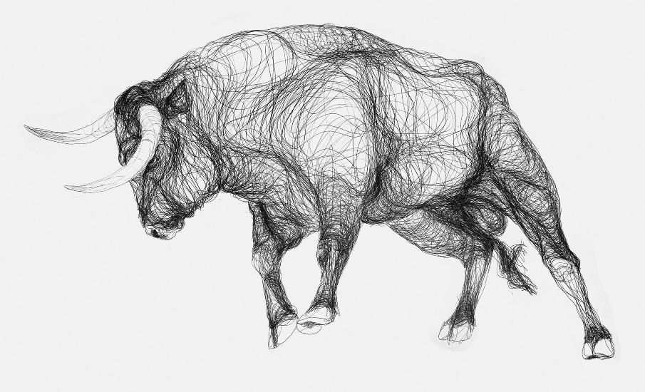 Bull 6 - marcus@marcusjames.co.uk