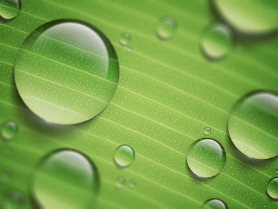 Water Drops by Konstantin Datz