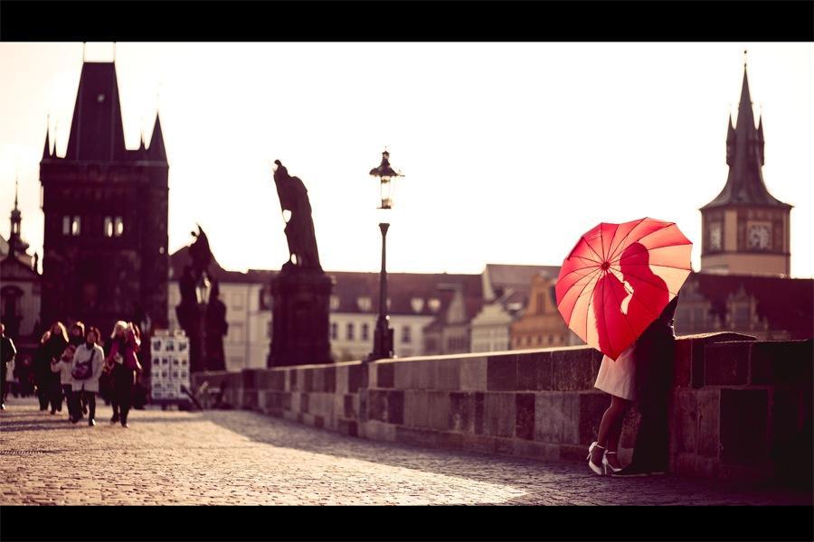 Свадебная фотография | 24 фотографии