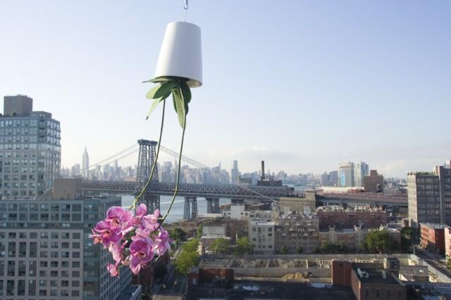 Sky Planter by Boskke   FancyCrave
