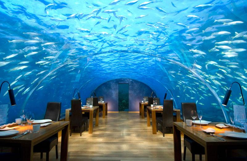 glass roof house underwater - Google Search #221609 on Wookmark