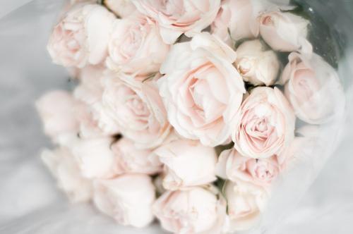 Adriana Lima fresh feeling ? We Heart It / ???????? ??? ???????? ? 30829667