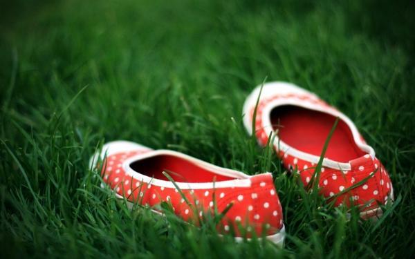 grass,shoes grass shoes 2560x1600 wallpaper – grass,shoes grass shoes 2560x1600 wallpaper – Shoes Wallpaper – Desktop Wallpaper