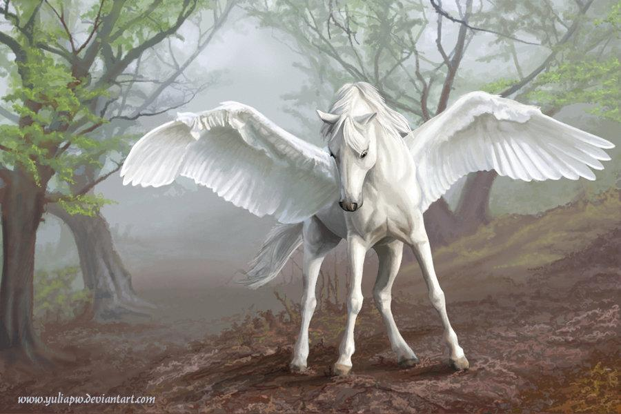 Pegasus by *YuliaPW