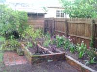 Gallery - Garden Services in Cape Town, South Africa – Agapantha Greening
