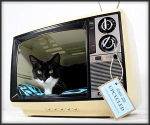 Retro TV Cat Bed - The Awesomer