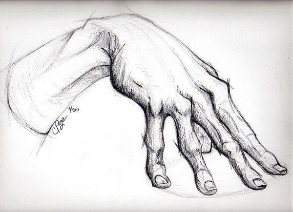 The Anatomy of a Hand by ~Tarana