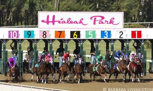 Hialeah Park: A photo album | Daily Racing Form