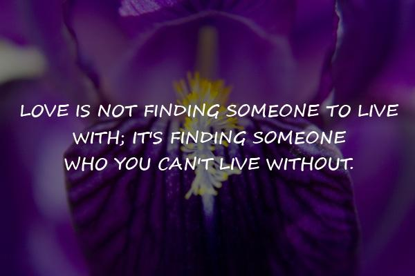 love is not finding inspirational quotes share life