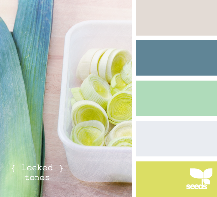 Design Seeds® | for all who ? color | leeked tones