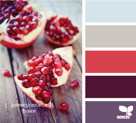 Design Seeds® | for all who ? color | pomegranate hues