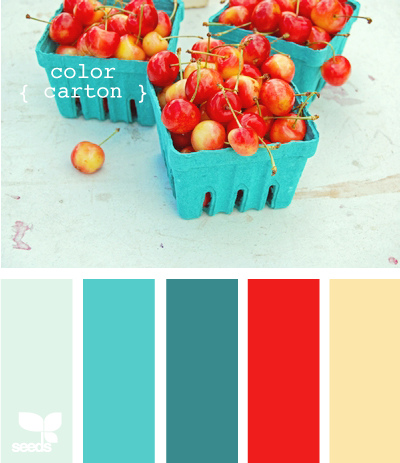 Design Seeds® | for all who ? color | color carton