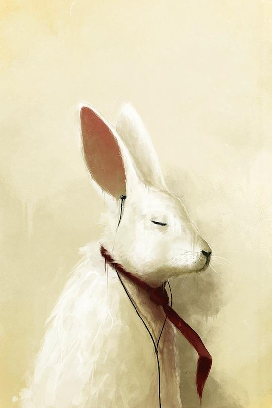 35 Best Bunny Illustrations | Petshopbox Studio