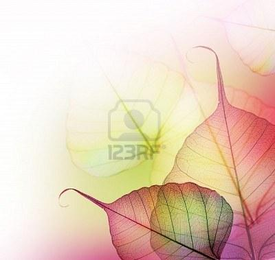 Borders Images, Stock Pictures, Royalty Free Borders Photos And Stock Photography