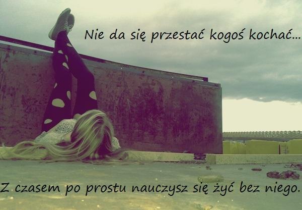 BESTY.pl - 476494